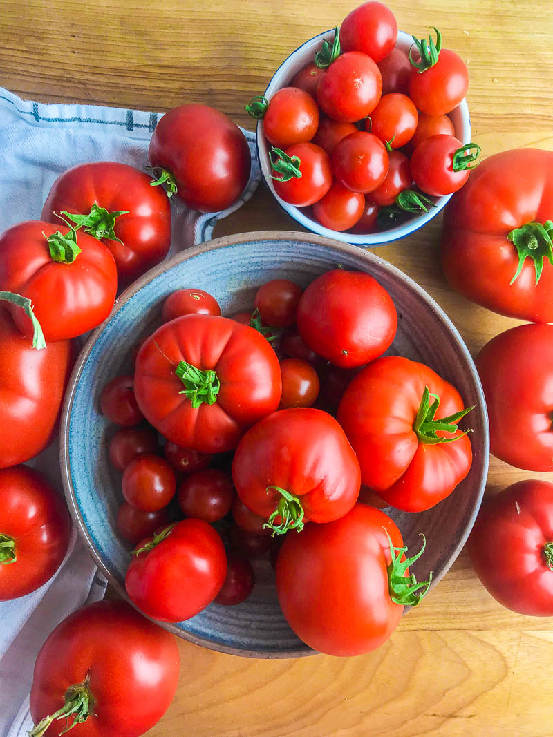 Picture of red summer tomatoes