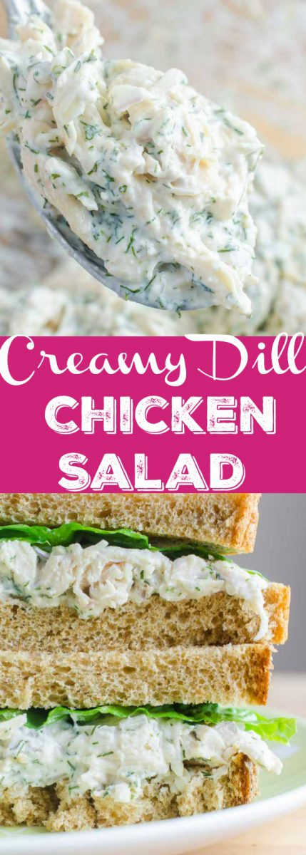 A creamy dill chicken salad sandwich made with fresh dill, mayo, yogurt, garlic, chicken and red onion. The perfect summer sandwich.